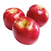 Apple - Fuji1